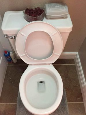 Before & After Toilet Cleaning (2)